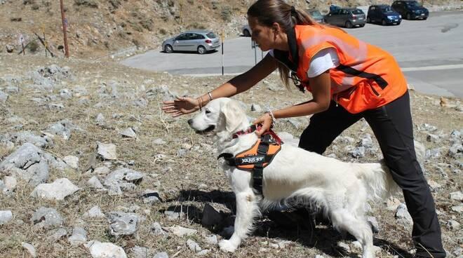 giornata mondiale del cane unità cinofile