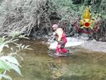 cane nel fiume lambro ad asso recuperato da pompieri