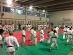 Judo d'élite nel comasco