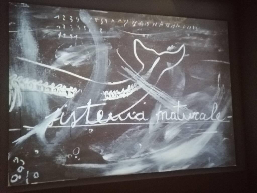 Nicola Salvatore mostra personale Pinacoteca Civica