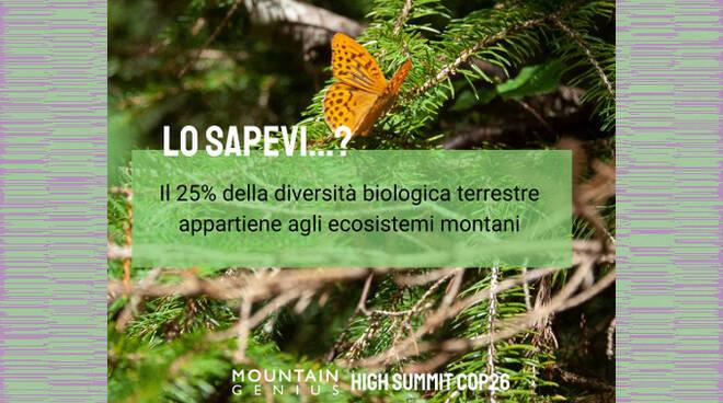 HIGH SUMMIT COP 21