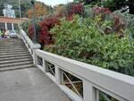 Como pulita e Rotaract sistemano la scalinata della stazione di como san giovanni